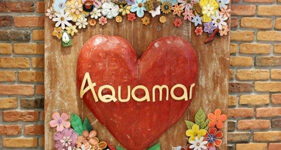 Evento Aquamar Rio / Uma tarde especial